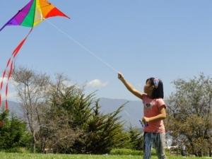 Girl flying kite 2012 Sb Kite Festival DSC02935